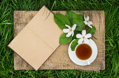 An open book with empty pages, a cup of hot tea and a quince flower. Tea break in the spring garden. Breakfast in the garden. Tea on the green grass Royalty Free Stock Photo