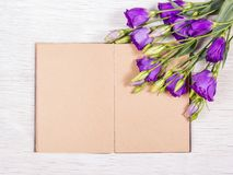 Open book with empty pages on a white background. Flowers and books. Romantic concept. Royalty Free Stock Images