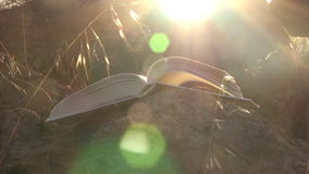 Open book with flipping pages at sunset