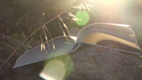 Open book with flipping pages at sunset stock video