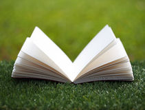 Open book with flower on grass Stock Photos