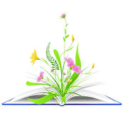 Open book with flowers and green grass Stock Images