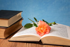 Open book and flowers Royalty Free Stock Photography