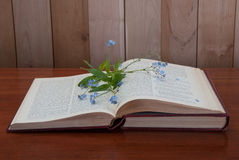 Open book with forget me not flowers. On wooden background Royalty Free Stock Images