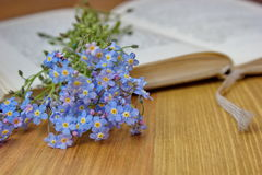 Open book with forget me nots Stock Photo