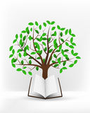 Open book in front of green leafy tree vector Royalty Free Stock Photo