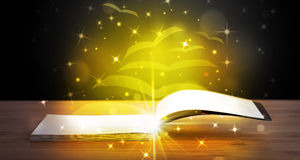 Open book with golden glow flying paper pages Stock Photos