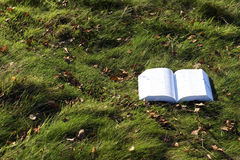 Open book on grass Stock Photo