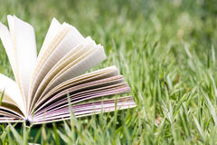 Open book in the grass. Summer spring backgound with stack of books and open book and bokeh. Back to school. Open book fanned pages. Copy Space Stock Photos