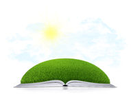 Open book with grass Stock Photography