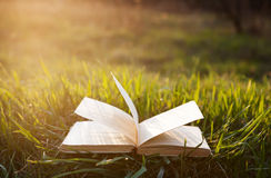 Open book on grass Royalty Free Stock Photography