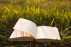 Open book on grass Royalty Free Stock Image