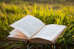 Open book on grass Royalty Free Stock Images