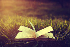 Open book on grass under the sun in vintage colors Royalty Free Stock Photos