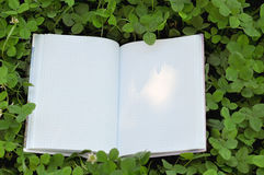 Open Book on Green Clover Grass and Ray of Light on Page Royalty Free Stock Photo