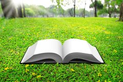 Open book on Green Grass. Background in park beautiful royalty free stock images