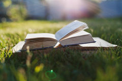 Open book on a green grass against beautiful sunset lights with sun ray Stock Photo