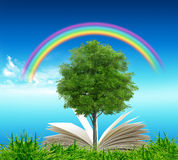 Open book in green grass over blue sky. And rainbow Royalty Free Stock Image
