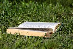 Open book on green grass in park beautiful natural environment, close up. Open book legit on grass. Summer, spring background. Open book on green grass in park stock images