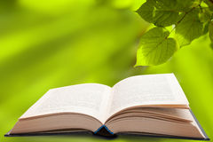 Open Book and Green Leaves Stock Image