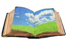 Open book with green meadow Royalty Free Stock Photo