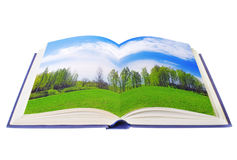 Open book with green meadow Stock Image