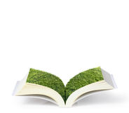 Open book with green tree Stock Image