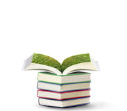 Open book with green tree Stock Photography