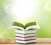Open book with green tree Stock Images