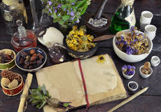 Open book with herbs, berries and flowers on witch table Stock Photos