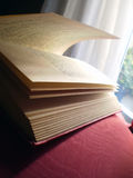 Open book, lateral view. Lateral  view of an open book Royalty Free Stock Image