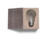 Open book with light bulb inside, 3D illustration. Open book with light bulb inside,  on white background, 3D illustration Royalty Free Stock Image