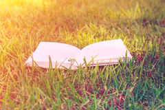 Open book lying on green grass warm sunlight, toned, education, reading, learning concept Royalty Free Stock Photos