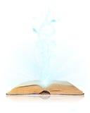 Open book magic. On white Stock Photos