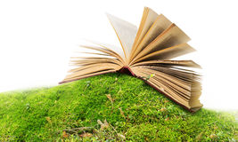 Open book on moss/ ground Royalty Free Stock Photos
