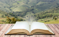 Open book in nature background stock images