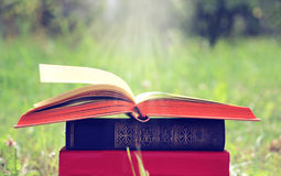 Open book on nature background. Knowledges is power Stock Photos