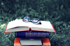 Open book on nature background. Knowledges is power Royalty Free Stock Image