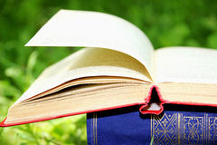 Open book on nature background. Knowledges is power Stock Images