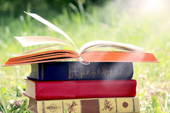 Open book on nature background. Knowledges is power Royalty Free Stock Images