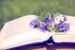 Open book on nature background. Knowledges is power Stock Photography