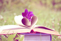 Open book on nature background. Knowledges is power Royalty Free Stock Photos