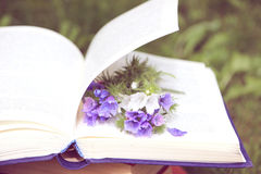 Open book on nature background. Knowledges is power Royalty Free Stock Photo