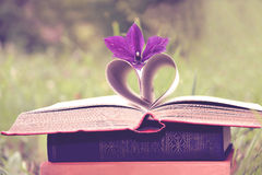 Open book on nature background. Knowledges is power Royalty Free Stock Photography