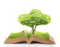 Open book of nature Royalty Free Stock Photo