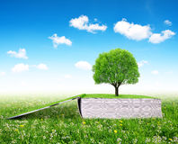 Open book of nature with tree. On meadow Royalty Free Stock Image