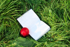 Open book and the nectarine is on the green grass Royalty Free Stock Images