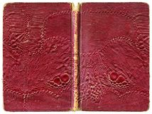 Open book or notebook - tattered vintage cover with artificial lizard leather Stock Images