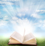 Open book. Grass and sky Royalty Free Stock Photos