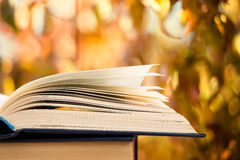 Open book over the landscape background Stock Photography